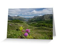 Ladies View Co. Kerry Greeting Card