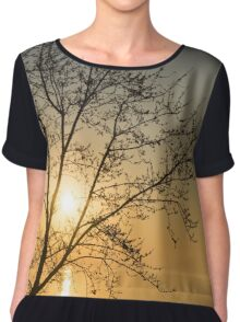 A Filigree of Branches Framing the Sunrise Chiffon Top