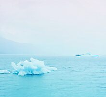 Iceberg by Leah Flores