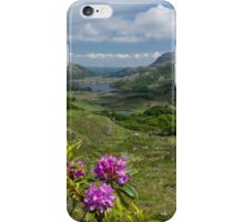 Ladies View Co. Kerry iPhone Case/Skin