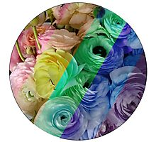 Flowers for Ellie - Rainbow Photographic Print