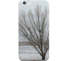 Winter Willow Scene iPhone Case/Skin