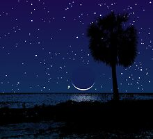 Gulf Coast Twilight by Kevin McLeod
