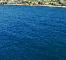Whales off Lurline Bay Sticker