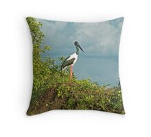 Jabiru Throw Pillow