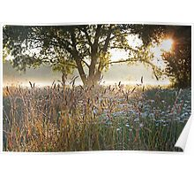 Summer Meadow No. 2 Poster