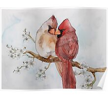 Lovely Cardinals Poster