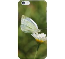 White Cabbage Butterfly II iPhone Case/Skin