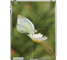 White Cabbage Butterfly II iPad Case/Skin