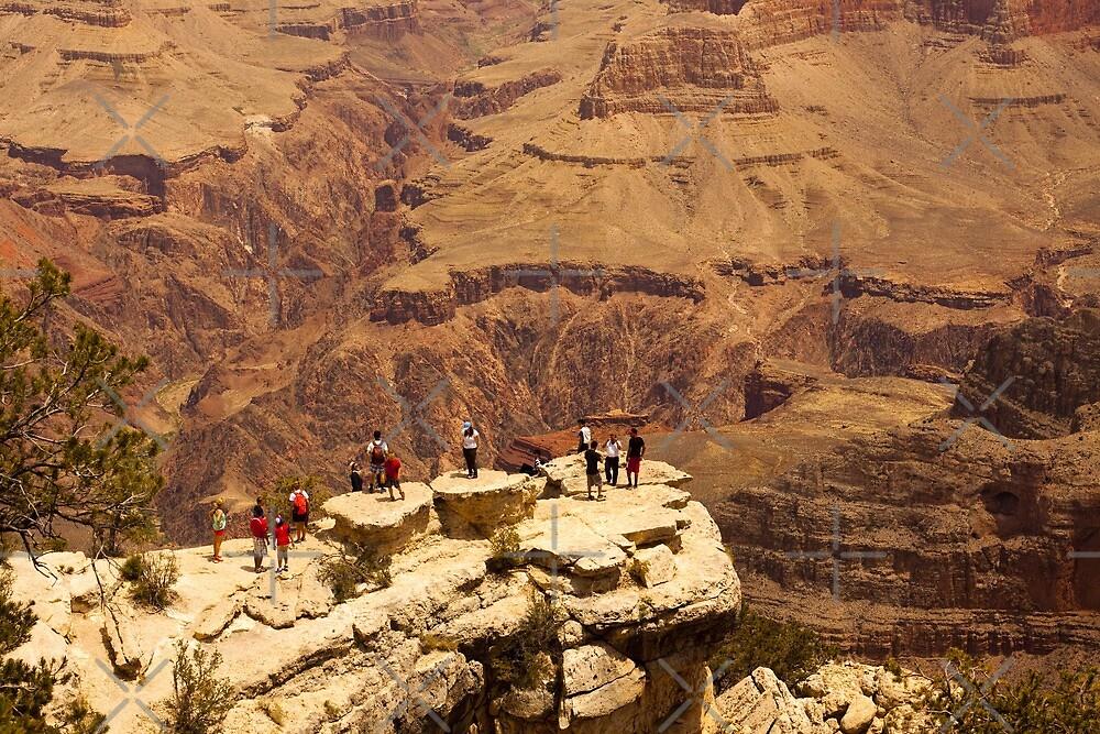 No Fear  -  Grand Canyon National Park - Arizona by Buckwhite