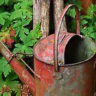 Antique watering can by Mortimer123