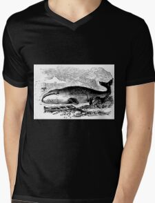 Water and Windfall  Mens V-Neck T-Shirt