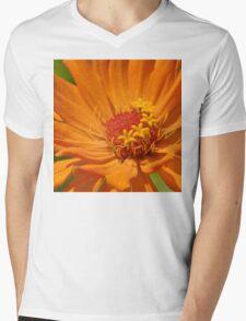 Orange Zinnia Mens V-Neck T-Shirt
