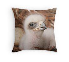 """""""An Eagles Beginning"""" Throw Pillow"""