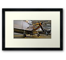 Yellow Nosed Mustang 2 Framed Print