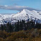 New Zealand Mountains by Nigel Roulston