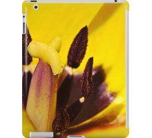 Macro red edged Picotee yellow Tulip iPad Case/Skin