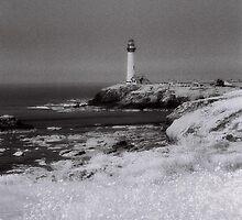 Seaside Lighthouse by Andrew Felton