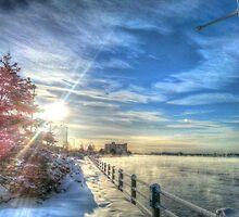 Cold Winter Sun by Ed Warick