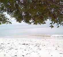The beach on Christmas Morning by cliste