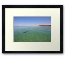 Shark Bay Framed Print