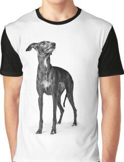 Italian greyhound Graphic T-Shirt