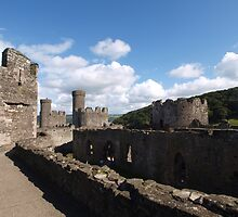 Conwy Castle (10) by kalaryder