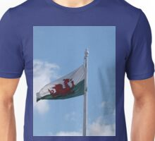 Fly the Dragon Unisex T-Shirt