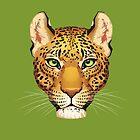 Leopard Face by Paula Lucas