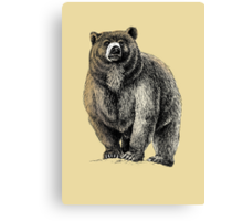 The Great Bear - A fierce protector Canvas Print
