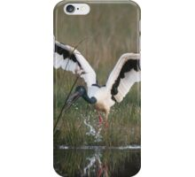 Stork Play iPhone Case/Skin