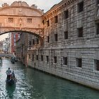 Bridge of sighs Venice by Vicki Moritz