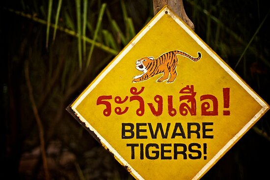 Beware Tigers by Russell Greenwood