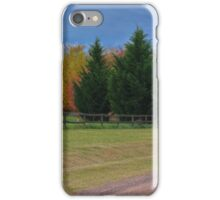 Strong Pine Trees iPhone Case/Skin