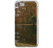 Palm Tree resting close to lagoon iPhone Case/Skin