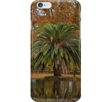 Palm Tree Lookink for Water iPhone Case/Skin