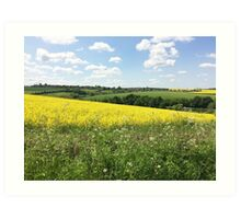 Ulley Fields Art Print