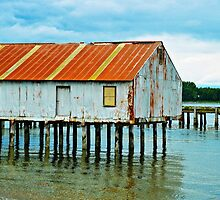 Semiahmoo Bay Boathouse by kchase