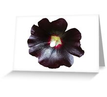 Black flower_big picture Greeting Card