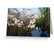 Spring Blossoms in Seoul Greeting Card