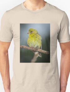 Baby Goldfinch Unisex T-Shirt