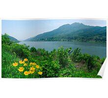 Landscape, South Korea Poster