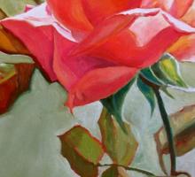 """Peace Rose"" Sticker"