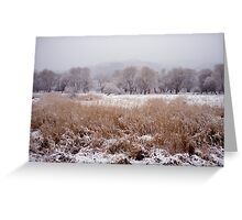 Snow by the River Greeting Card