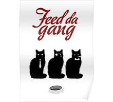 Feed da gang of cats Poster