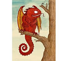 Dragon in Tree Photographic Print