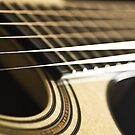 Light Plays Guitar by Liz Grandmaison
