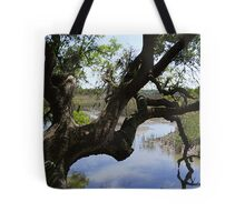 Old Tree Reaching Over To Taste The Water Tote Bag