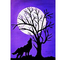 Full Moon Photographic Print