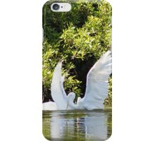 Two Swans showing there love iPhone Case/Skin
